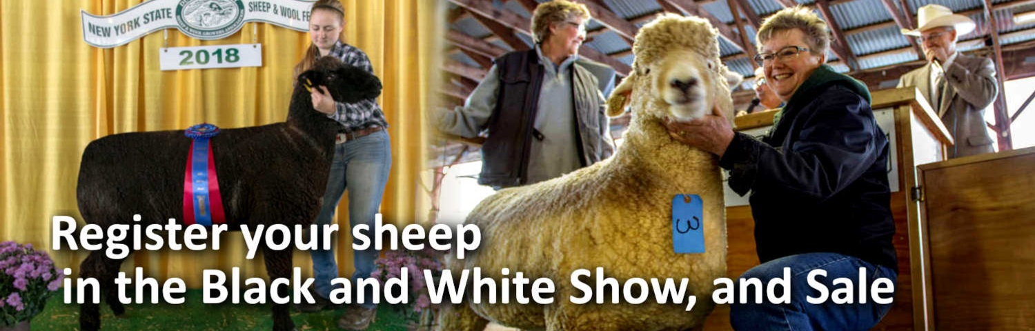 Home - Sheep and Wool Festival